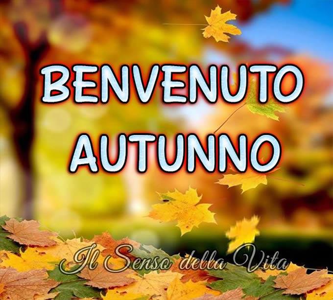 http://img.topimmagini.com/to/autunno/autunno_001.jpg