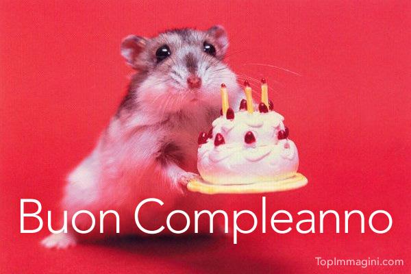 Buon Compleanno Divertenti immagine #3933