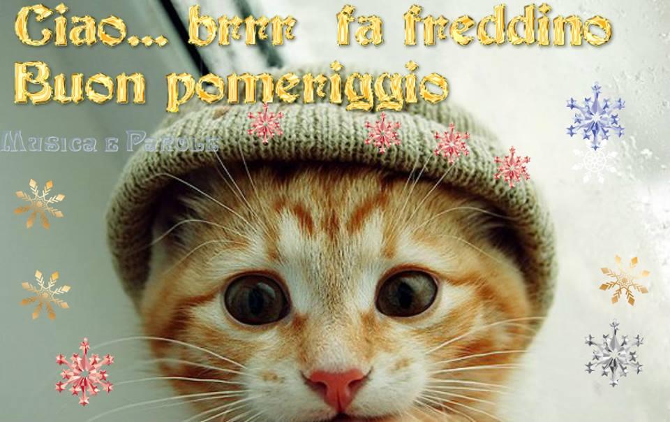 Ciao brrr fa freddino buon pomeriggio buon for Immagini buon pomeriggio due chiacchiere