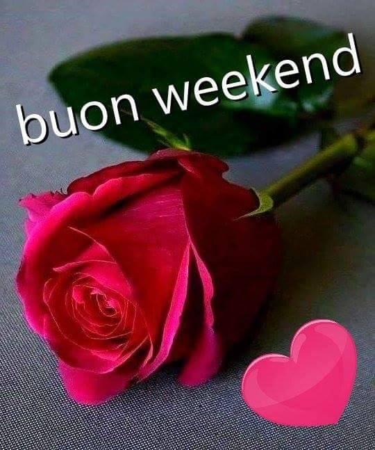 Buongiorno forum saluti lampo pagina 21 for Buon weekend immagini simpatiche