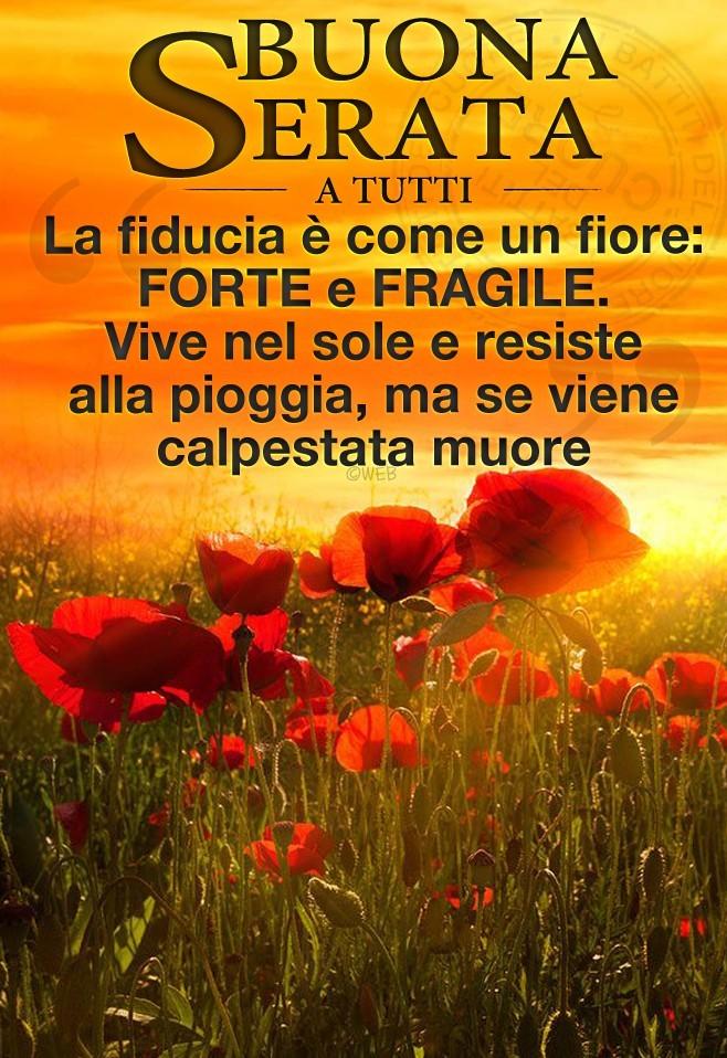 Buona Serata a tutti. La fiducia è come un fiore: forte e...