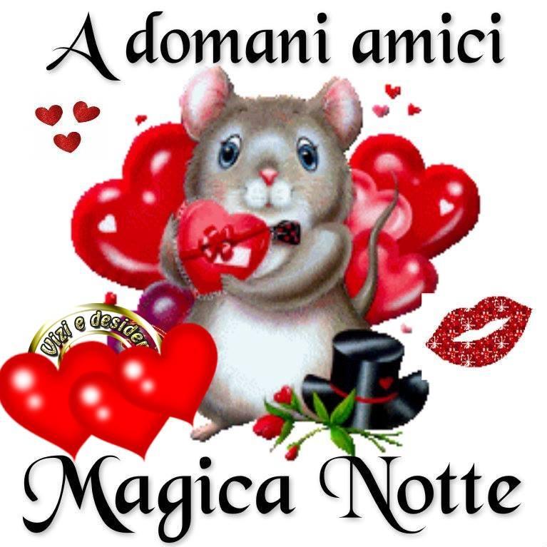 A domani amici, Magica Notte