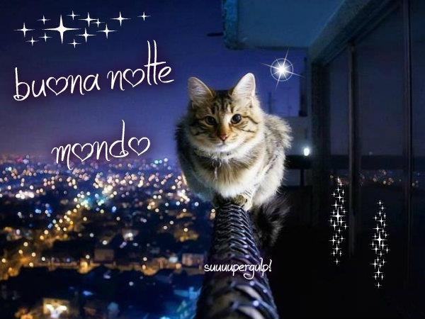 Buona notte mondo