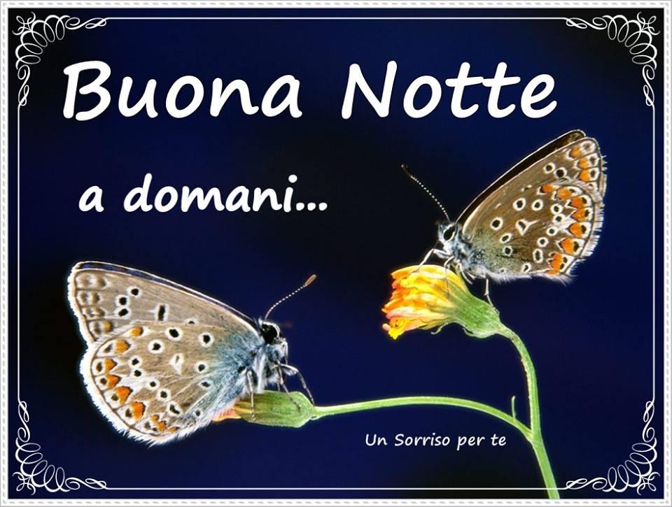 Buona Notte, a domani...