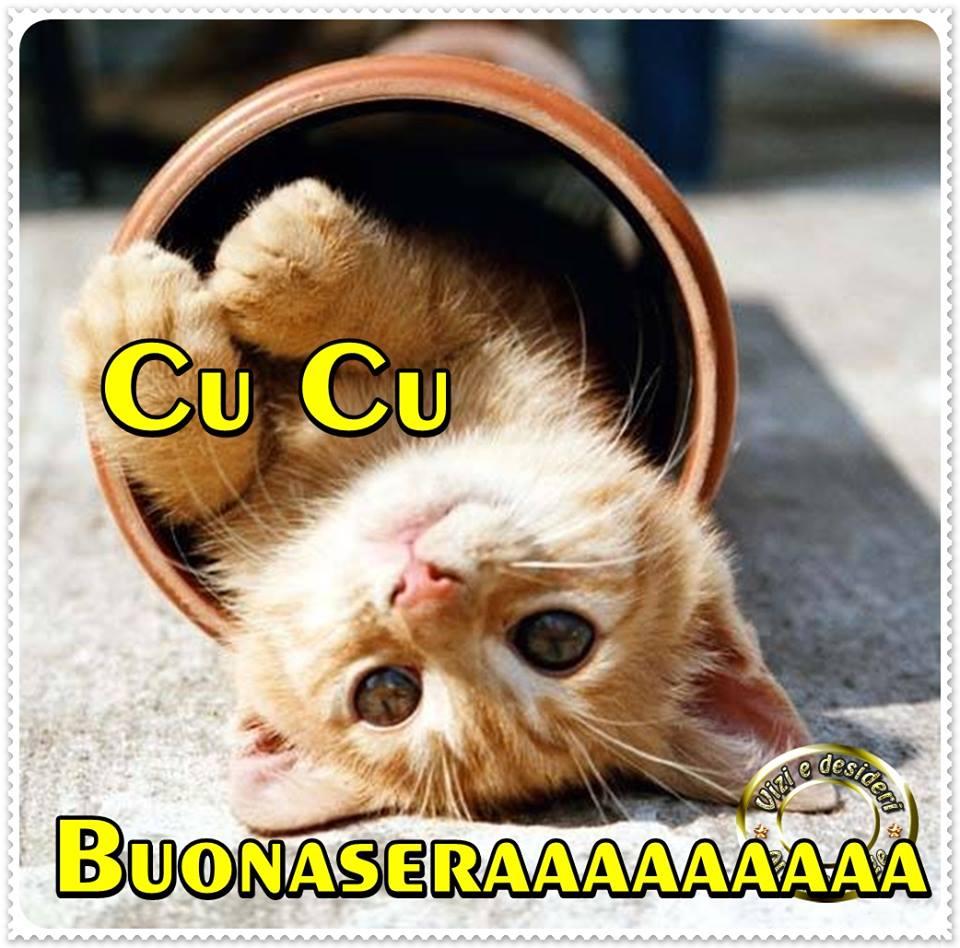 Cu Cu Buonaseraaaaaaaa