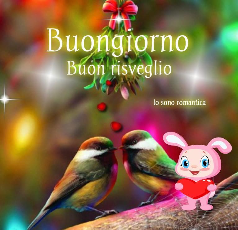 Pinterest the world s catalog of ideas for Foto immagini buongiorno