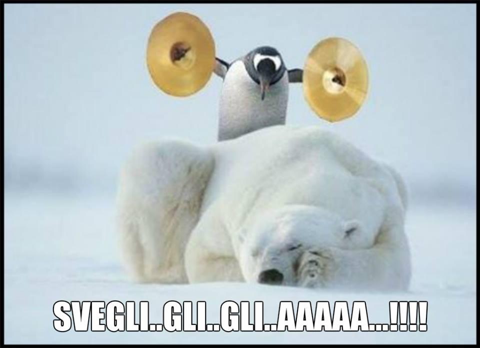 Svegli... gli... gli... aaaaa !!!