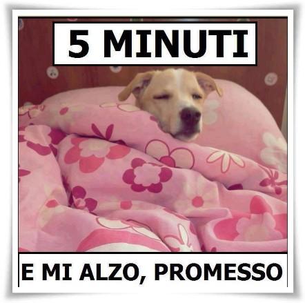 5 minuti e mi alzo, promesso