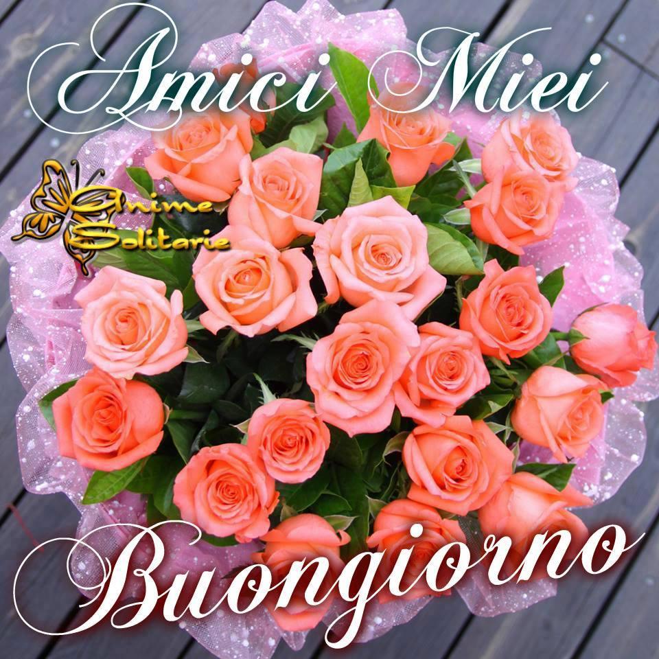 Buongiorno immagini e fotos gratis per facebook topimmagini for Foto buongiorno amici