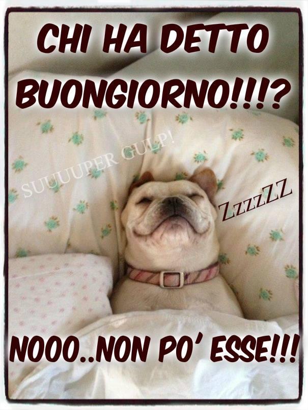 Buongiorno immagini e fotos gratis per facebook topimmagini for Immagini divertenti buongiorno venerdi