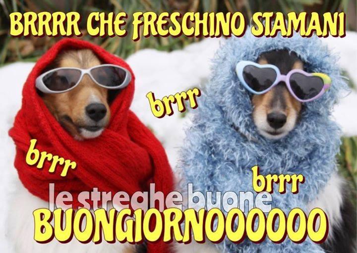 Brrrr che freschino stamani, Buongiornooooo