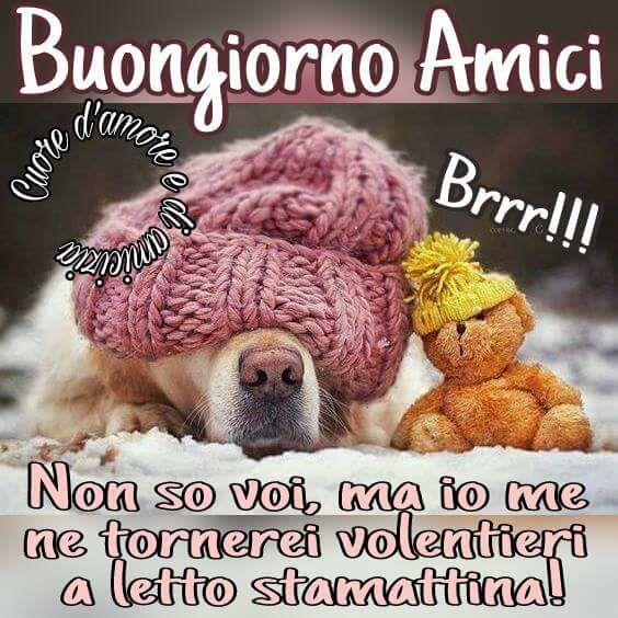 Buongiorno Amici... Brrr!!!