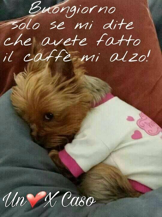 Buongiorno solo se mi dite che avete fatto il caffé mi alzo!
