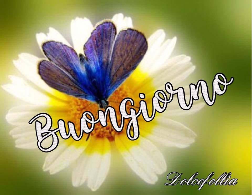 Buongiorno immagini e fotos gratis per facebook topimmagini for Immagini bellissime buongiorno