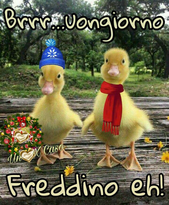 Molto cartoline gratis buongiorno ko83 pineglen for Foto buongiorno gratis
