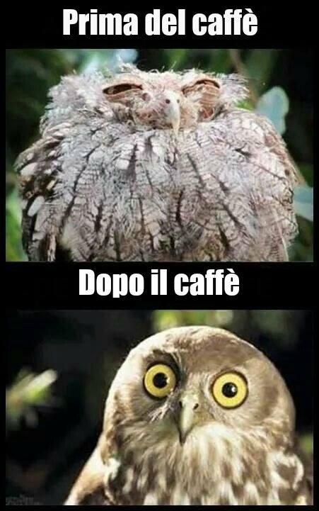 Prima del caffè... Dopo il caffè