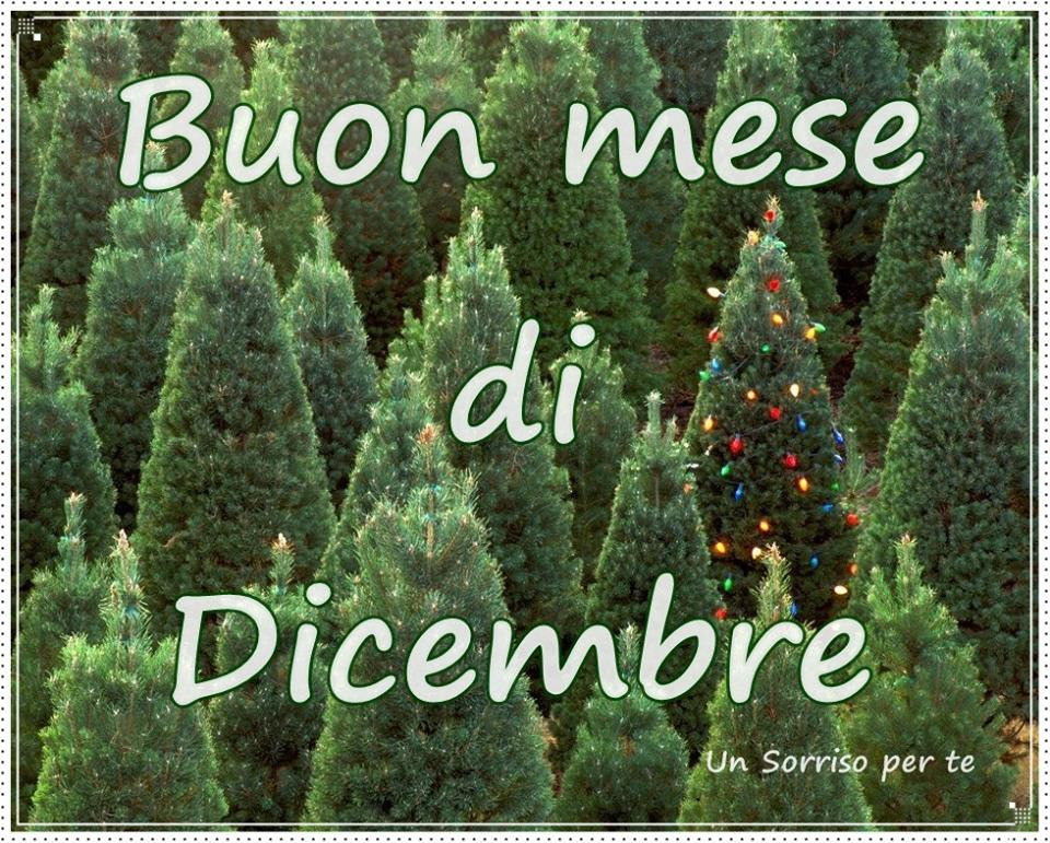 Buon mese di Dicembre