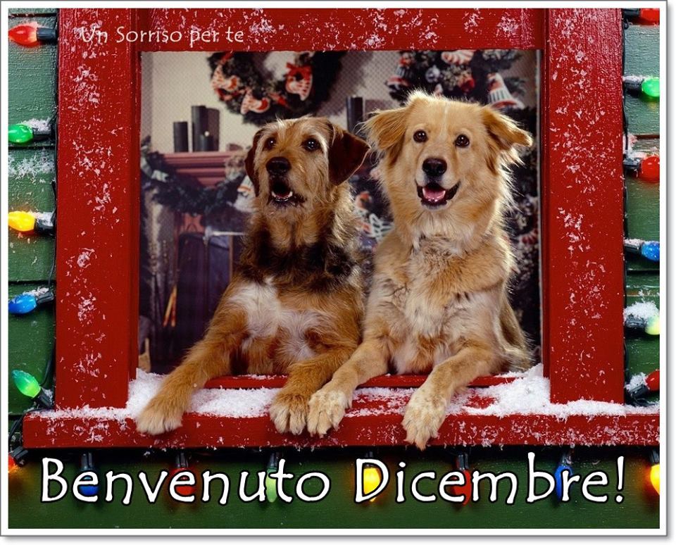 Benvenuto Dicembre!