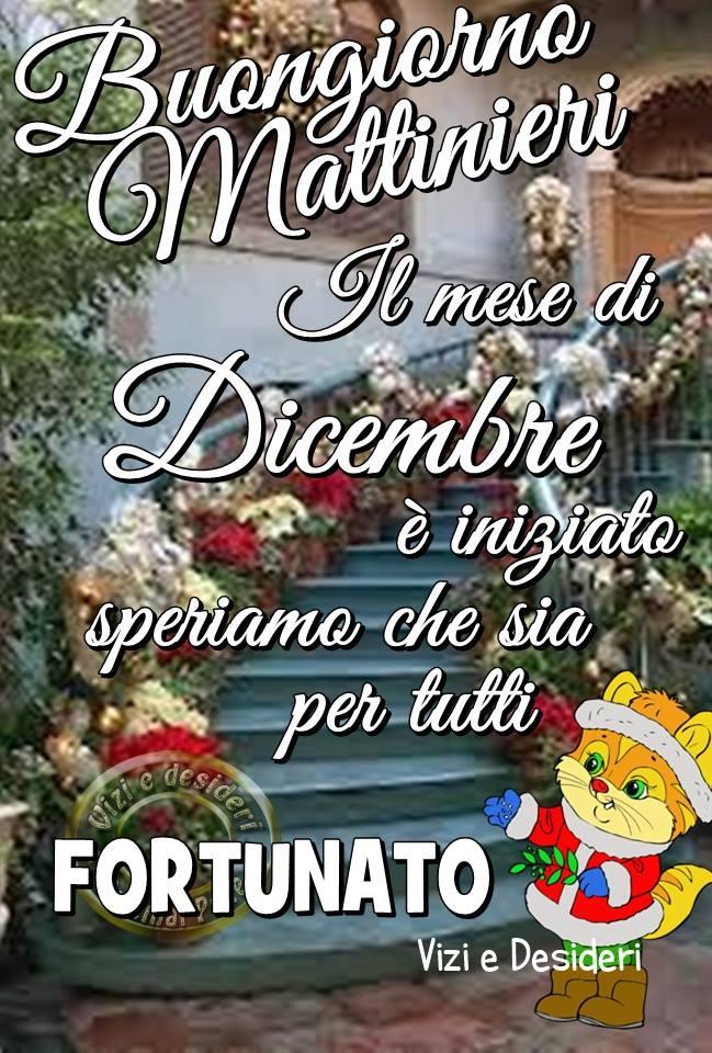 Il mese di Dicembre è iniziato...