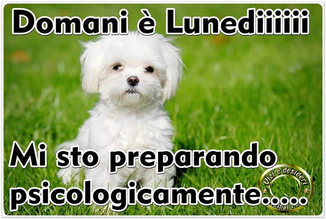 Domani è Lunediiiii