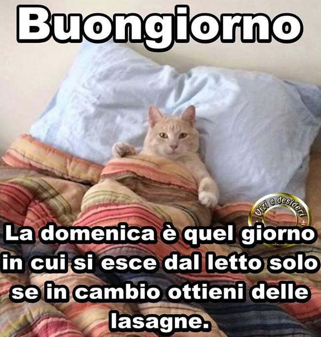 Domenica immagini e fotos gratis per facebook for Immagini buongiorno divertentissime