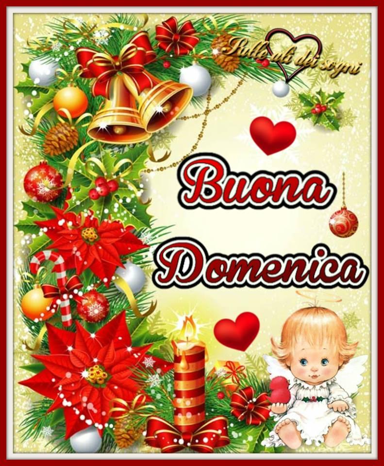 A Cc Z also Martedi Sera additionally Hpim together with Domenica moreover Roccamandolfi. on farfalle fiori