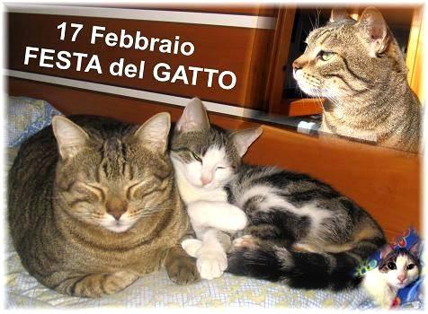 17 Febbraio, Festa del Gatto