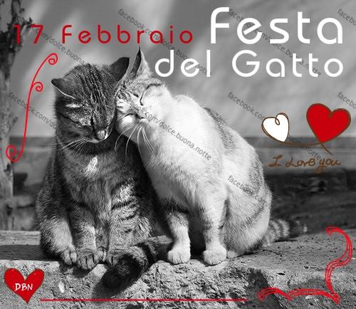 17 febbrario, Festa del Gatto