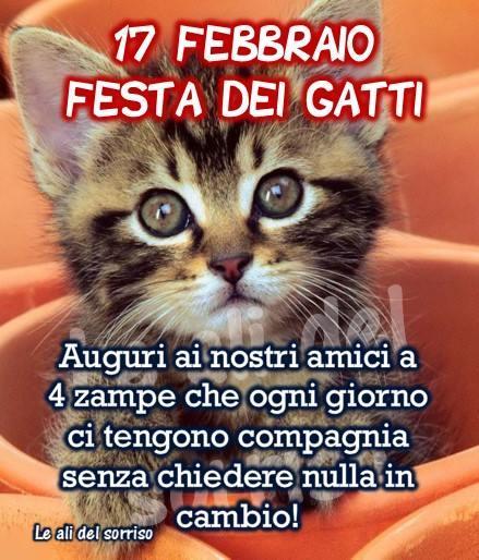 17 Febbraio - Festa dei Gatti Auguri ai...