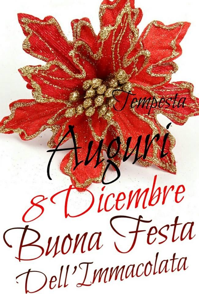 Auguri 8 Dicembre Buona Festa...