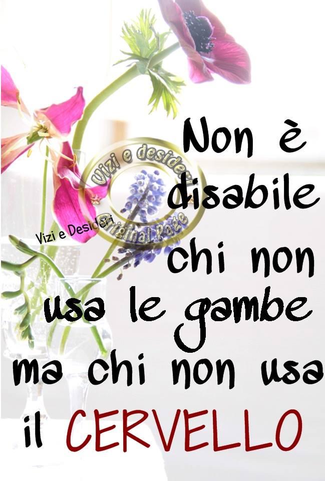 Non è disabile chi non usa le gambe ma chi non usa il cervello