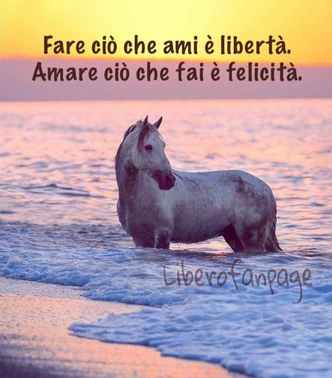 Fare ciò che ami è libertà. Amare...
