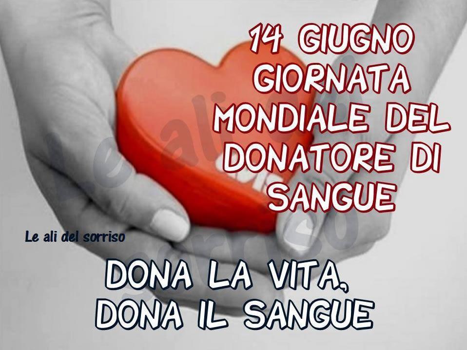 Giornata Mondiale del Donatore di Sangue immagine 1