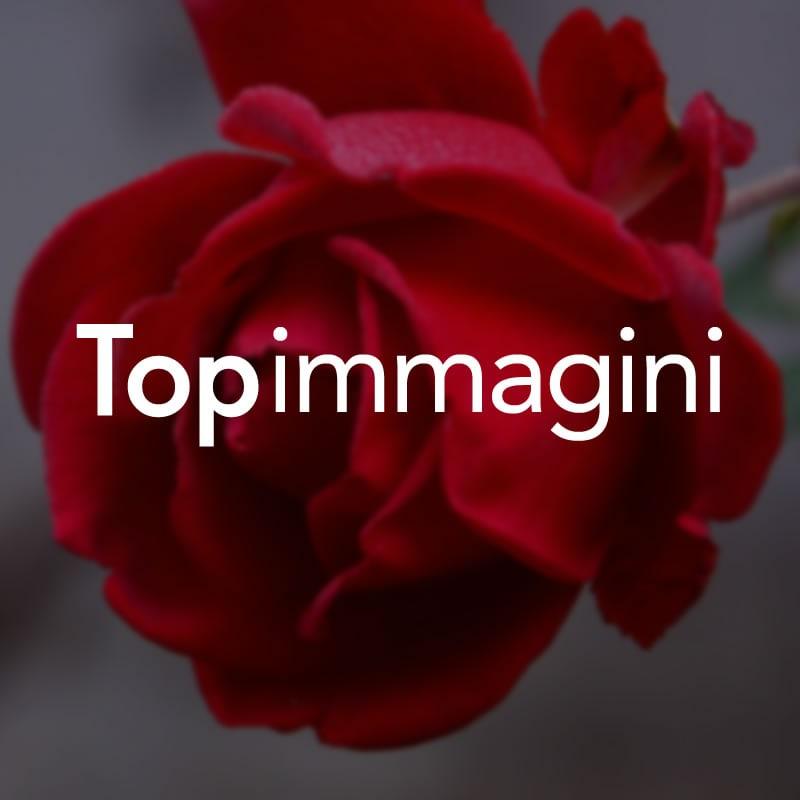 Happy New Year immagine #3209