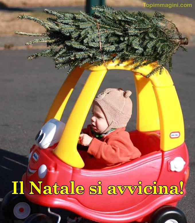 Il Natale si avvicina!