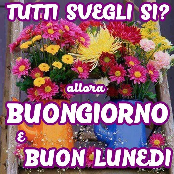 Lunedi immagini e fotos gratis per facebook topimmagini for Immagini buon lunedi amici