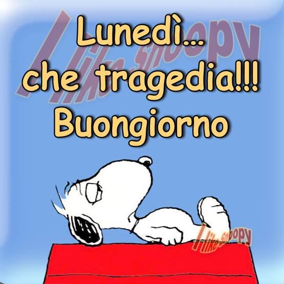 Lunedì... che tragedia!!! Buongiorno