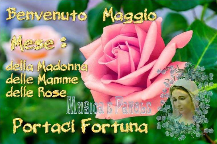 Benvenuto Maggio, Portaci Fortuna