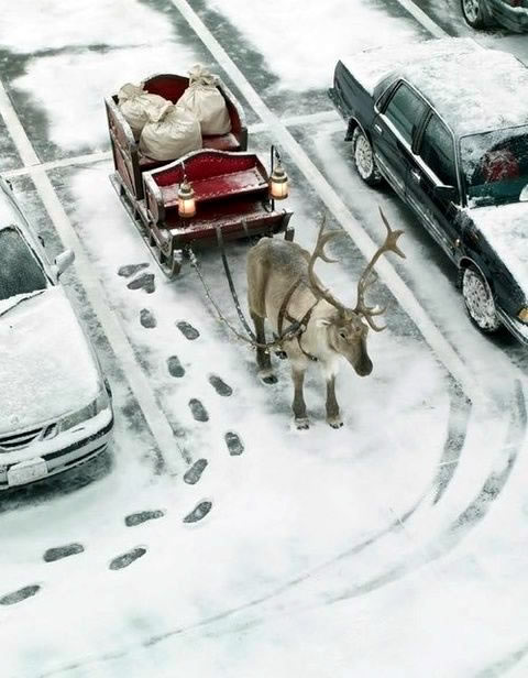 Natale Divertente immagine 1