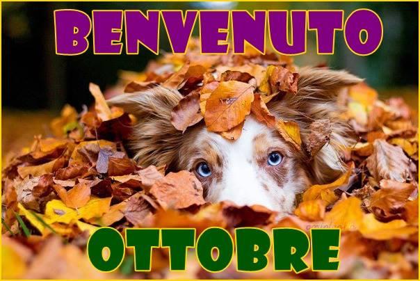 Benvenuto Ottobre