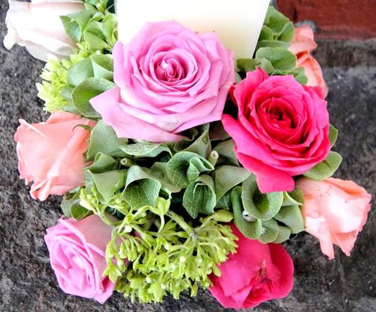 Rose immagine #319