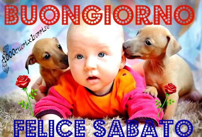 Buongiorno felice sabato immagine 480 topimmagini for Immagini divertenti buongiorno sabato