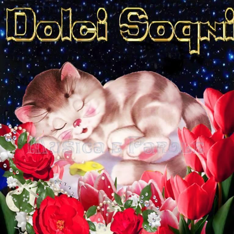 Sogni d'oro immagine 6