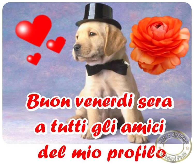Buon Venerdì Sera A Tutti Gli Amici Del Mio Profilo