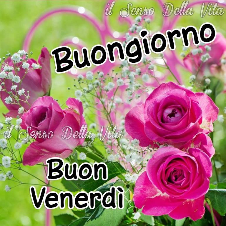 Buongiorno buon venerd immagine 1906 topimmagini for Immagini divertenti buongiorno venerdi