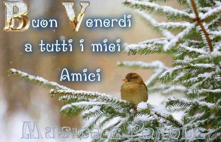 Buon Venerdi a tutti i miei amici