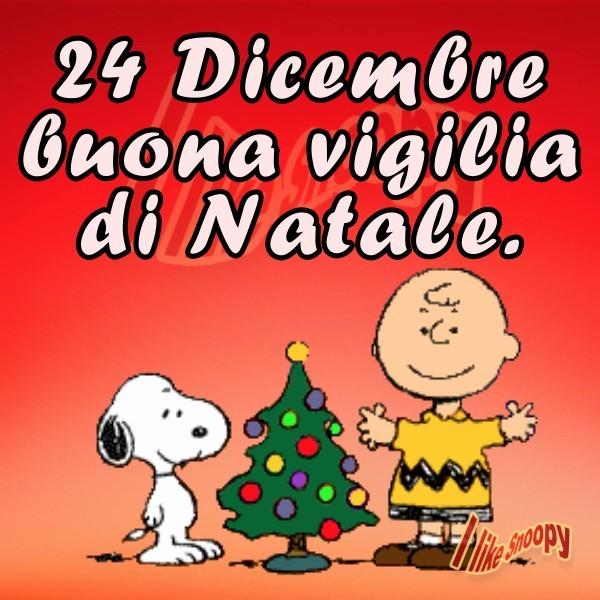 24 Dicembre, buona vigilia di Natale